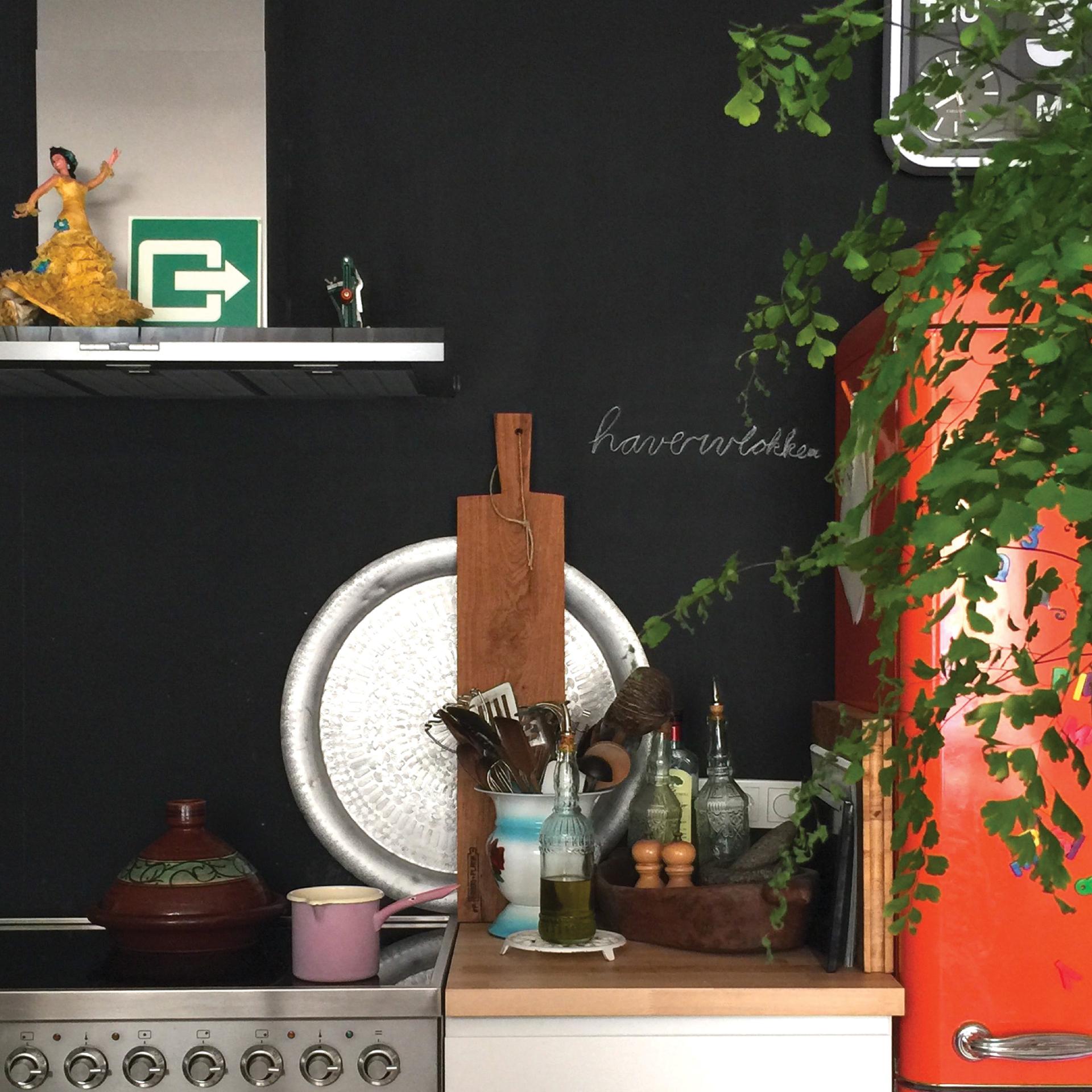 // open keuken in ecologisch huis Den Bosch